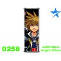 Pòster de tela Sora Kingdom Hearts