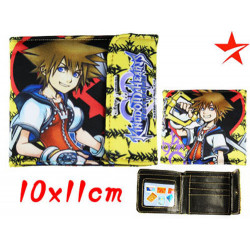 Cartera Kingdom Hearts Sora